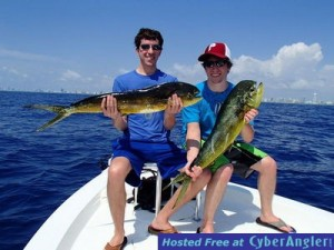 Dolphin, aka Mahi Mahi, is one of the best saltwater fish to catch.