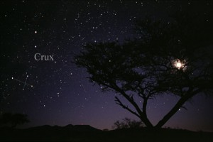 Photo of the constellation Crux, the Cross. Credit: Tim Credner, AlltheSky.com . From Wikimedia Commons, the free media repository.